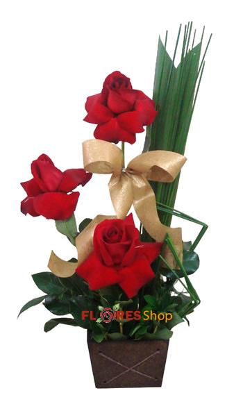 1686 * Rosas Importadas