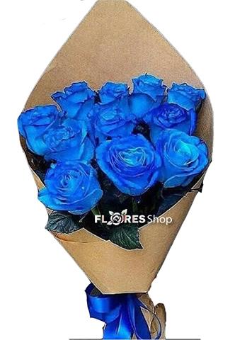 2146 Todo Azul
