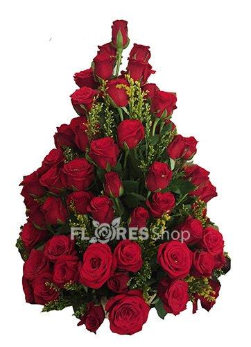 408 Pinheirinho de Rosas Vermelhas
