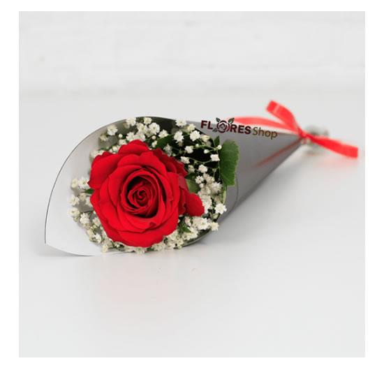 4581 Uma Rosa especial