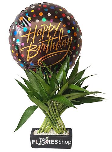4845 Bambu da sorte e balão