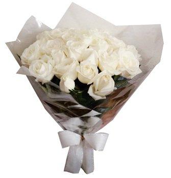 550 White Rose
