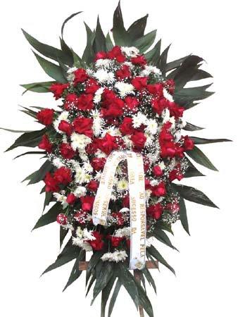 559 Condolências