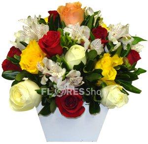 753 Show de rosas